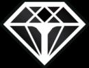 blackdiamond squeegee rubber loogo https://fensterputzererlangen.de reinigungsfirma